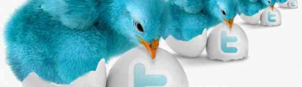 Como fazer um Twitter